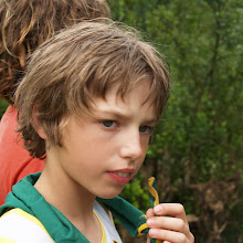 Taborjenje, Lahinja 2006 1.del - P0127858.JPG