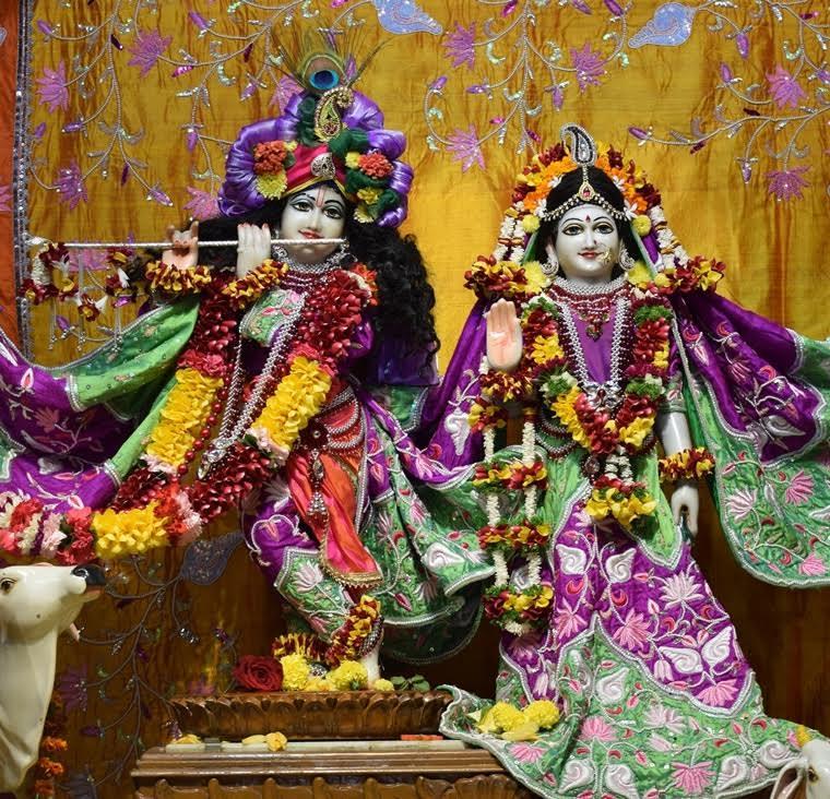 ISKCON Pune Camp Deity Darshan 17 Jan 2017 (3)