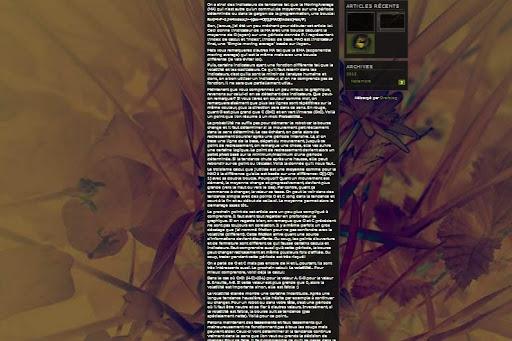 Extrait d'un blog zoom 50%