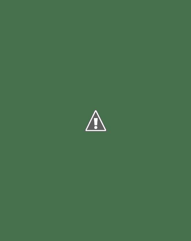 Camos rusos (en imágenes) - Página 2 763420gorkamodox