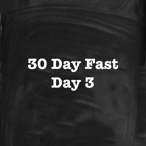 30 Day Fast - Day 3 (May 31, 2015)