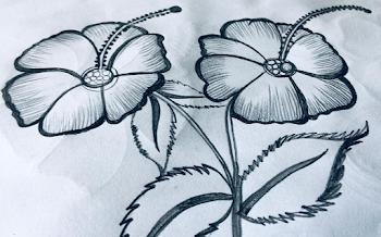 Hibiscus pair tattoo