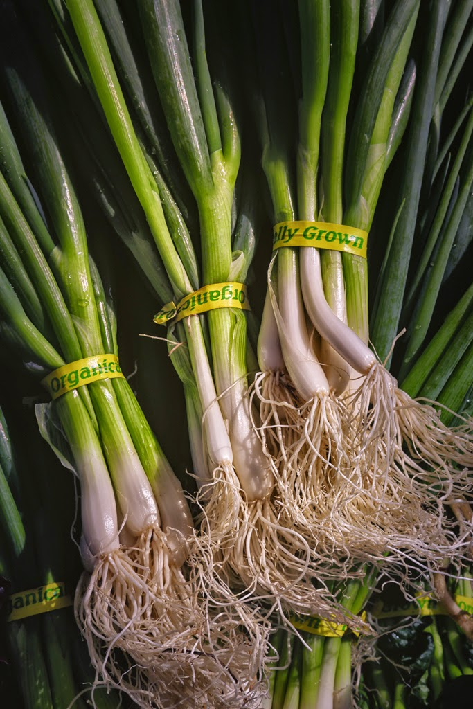 """Green Onions"" by Roy Kropp  - 3d place print"