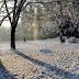 На Новий рік у більшості областей температура повітря сягатиме +10 градусів, – синоптик