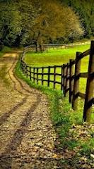 Country_Road.jpg