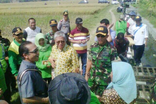 Panen Raya di Kabupaten Madiun