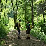 zielone dziewczynki w zielonym lesie