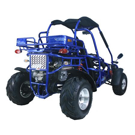 Blue 300cc Twister Trailmaster Rear Dune Buggy