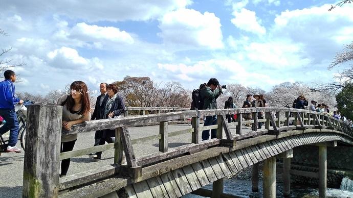 15 京都 嵐山渡月橋 賞櫻 櫻花 Saga Par 五色霜淇淋 彩色霜淇淋