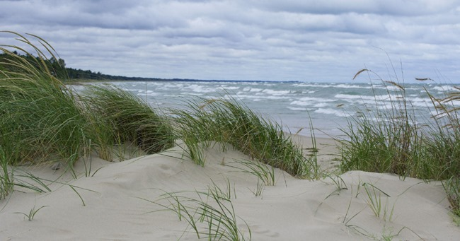 dune formation near Pinery Provincial Park Lake Huron