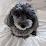 Atsushi NOGUCHI's profile photo