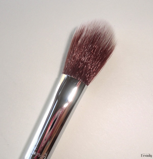 Sigma Beauty Highlight Expert Brush Set Review 5