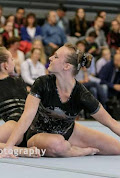 Han Balk Fantastic Gymnastics 2015-8383.jpg