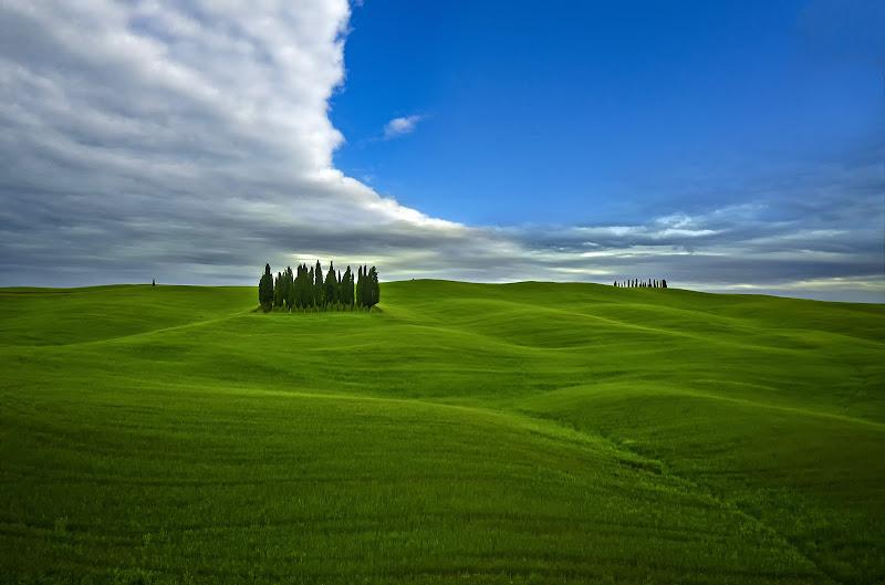 Sembra quasi un mare, l'erba... di tonino_de_rubeis
