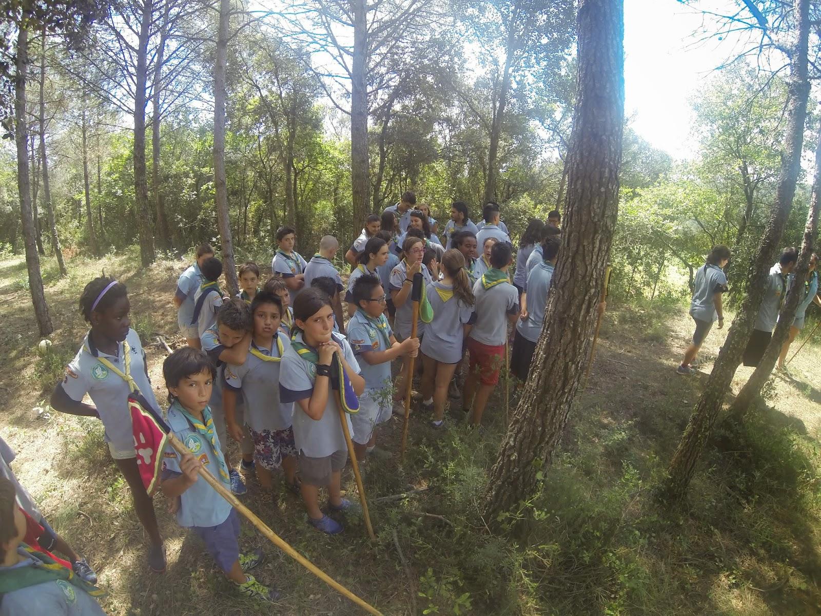Campaments Estiu Cabanelles 2014 - G0073749.JPG