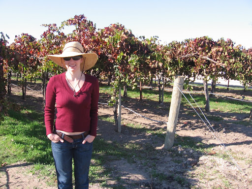 in the vines at wild horse