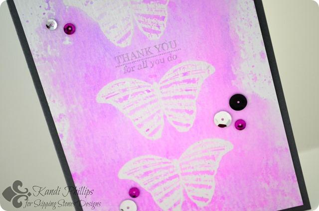 Thank You Butterfly Closeup