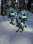 まずは、カンジキをつけよう。写真はスノーシューと呼ばれる洋風カンジキ。、雪がやわらかくて深い時や逆に固い時で、いずれもなだらかなコースの場合に使います。写真にありませんが日本古来の輪カンジキを用いる日の方が多いです。いづれも初めて履いた瞬間から雪の世界を自由に飛びまわれるようになるよ! (いづれのカンジキもこちらで準備しています。(フリーサイズです)