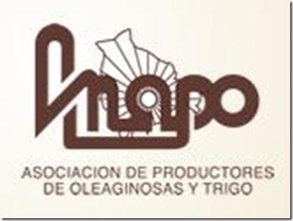 Asociaciones bolivianas