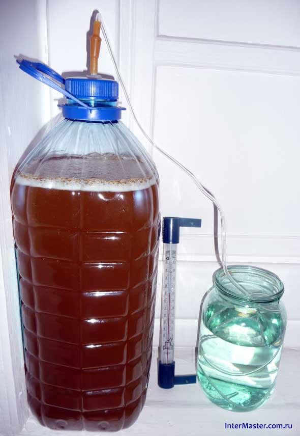 Сусло медовухи с гидрозатвором