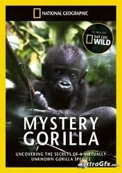 National Geographic - Mystery Gorilla - Loài khỉ đột bí ẩn