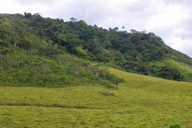 Route Apuela-Selva Alegre, Intag (Imbabura, Équateur), 18 novembre 2013. Photo : J.-M. Gayman