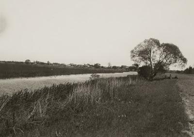 Вид на деревню с южной стороны.30-е годы XX века(из собрания Эст. национального музея ERM Fk 577:40)