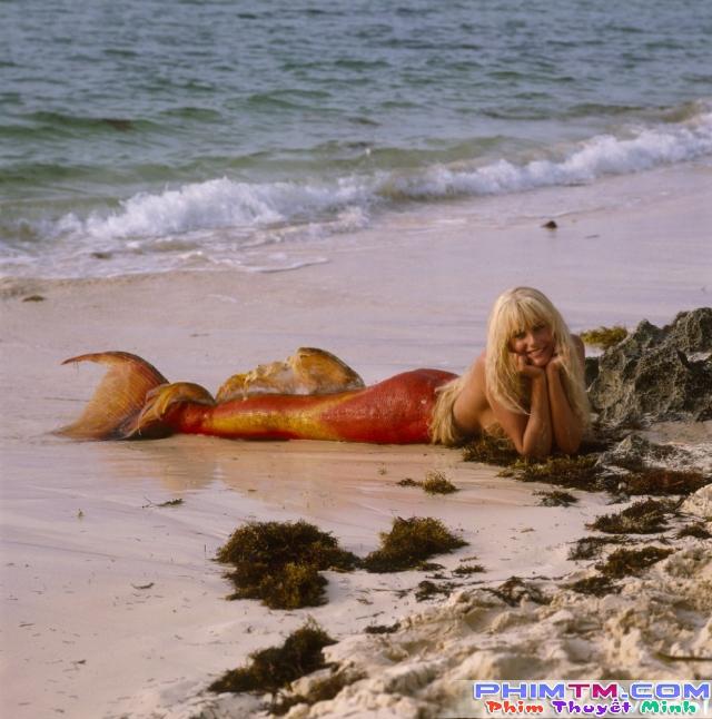 Xem Phim Chuyện Tình Nàng Tiên Cá - Splash - phimtm.com - Ảnh 4