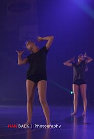 Han Balk Voorster dansdag 2015 ochtend-2026.jpg