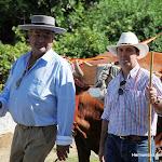 CaminandoalRocio2011_335.JPG