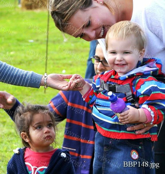 THE CHILDRENS ADVENTURE FARM TRUST - BBP148.jpg