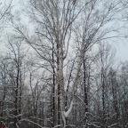 Зимний Вантит 120.jpg