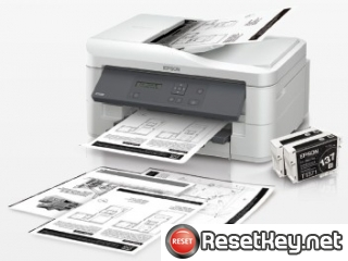 Epson K300 Waste Ink Counter Reset Key