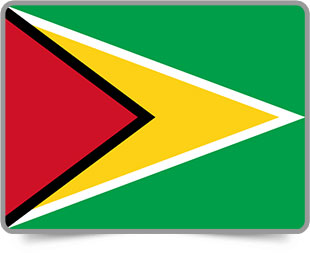 Guyanese framed flag icons with box shadow