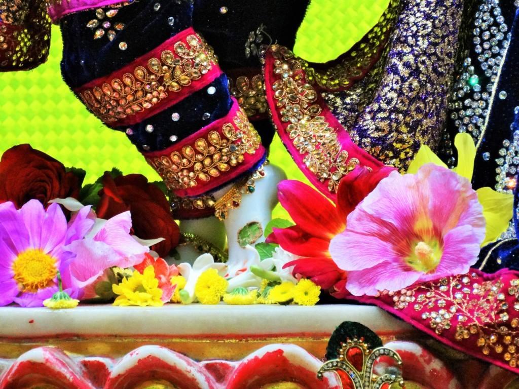 ISKCON Punjabi Bagh Deity Darshan 16 Mar 2016 (15)