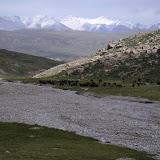 Troupeau de yaks, au Sud de Kara Say, Mts Borkoldoy (Koksaal Alatau), Kirghizstan, 11 juillet 2006. Photo : F. Michel