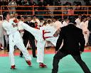Campionato Italiano OPEN 2011 Kumite - Penne