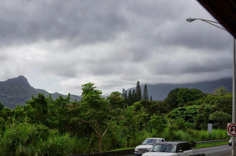 06-18-13 Waikiki, Coconut Island, Kaneohe Bay - IMGP6984.JPG