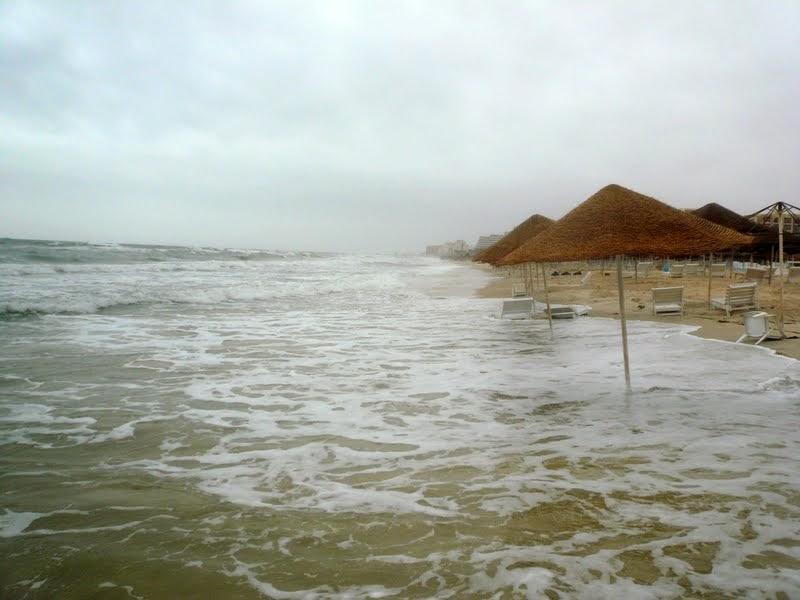Май. Тунис. Марабу. Несколько слов в защиту Туниса.