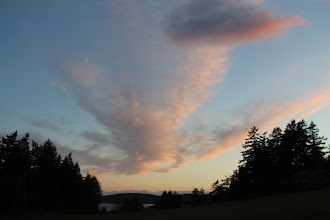 Photo: Evening view