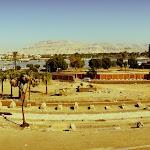Egypt Edits (188 of 606).jpg