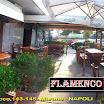 FLAMENCO PUB 87  E TOP CARD ITALIA.jpg