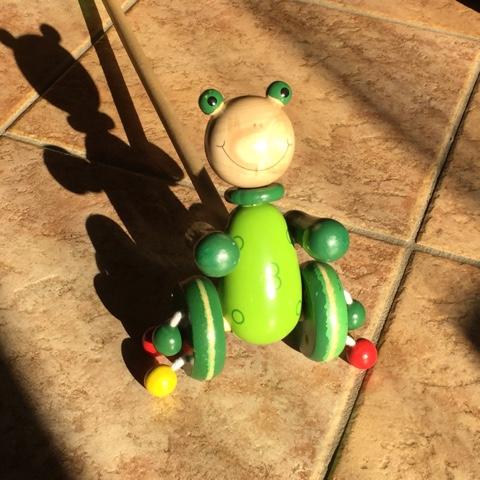 Frosch im Sonnenschein