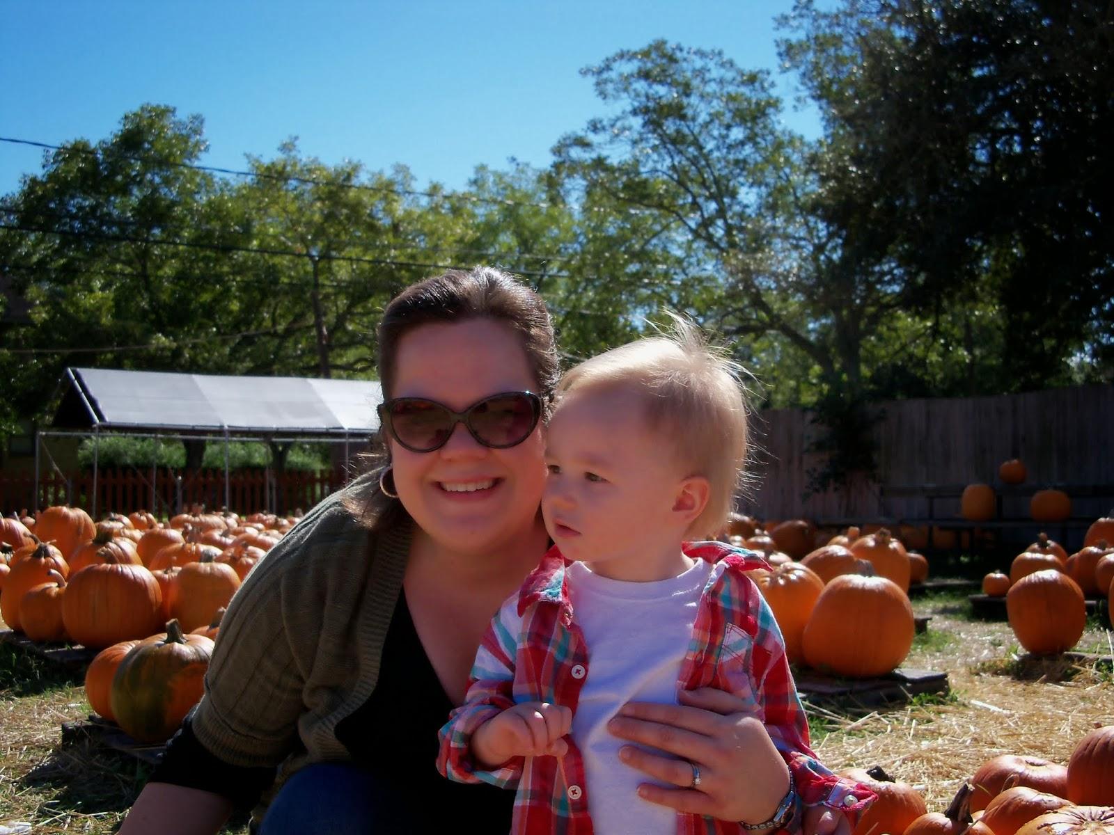 Pumpkin Patch - 115_8239.JPG