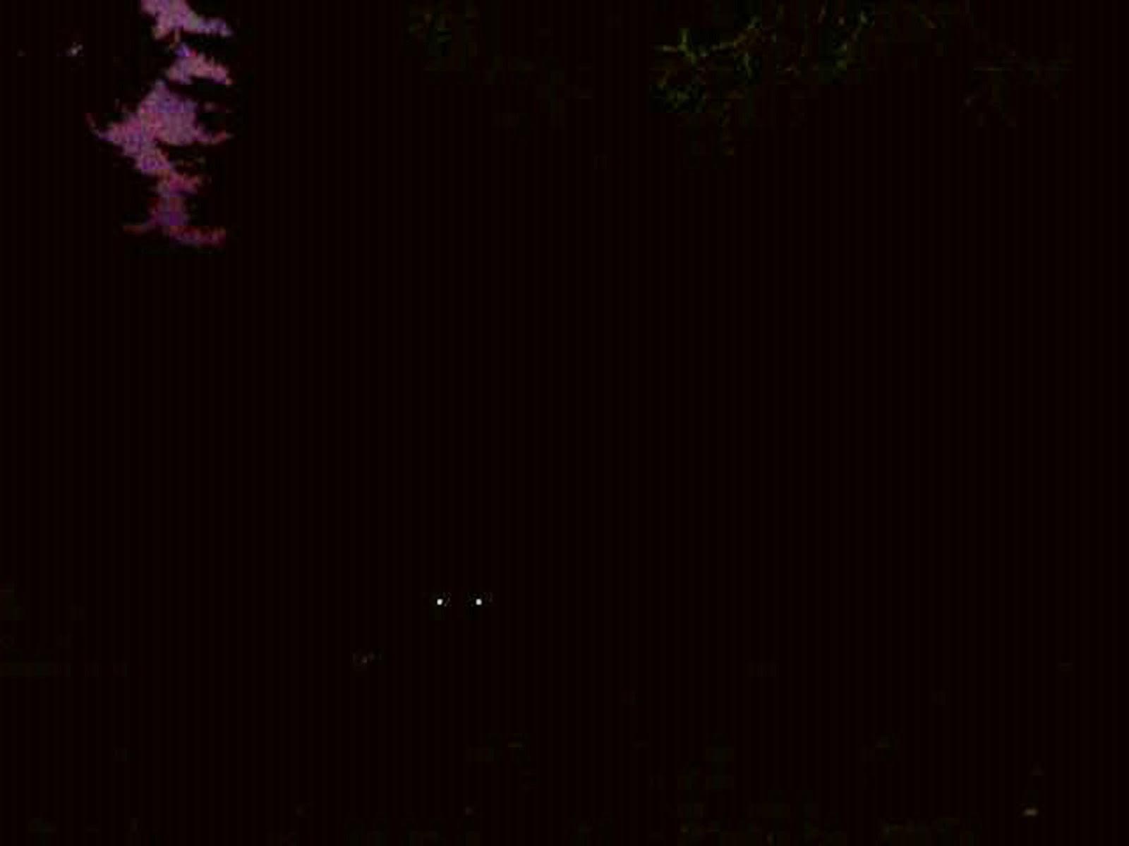 Jesenovanje, Črni Dol - photo79.jpg