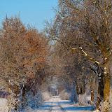 Winter - Winter-015.jpg