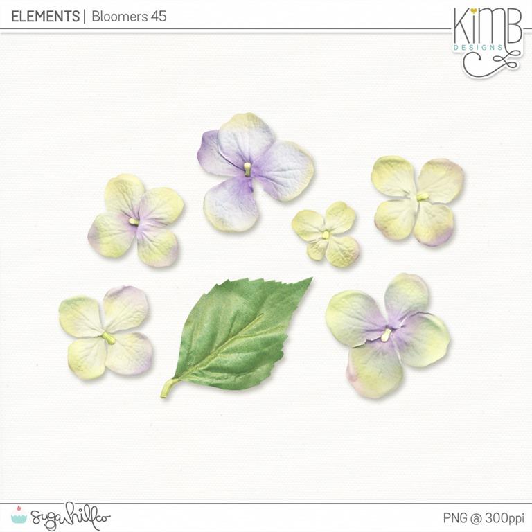 [kb_Bloomers45%5B4%5D]