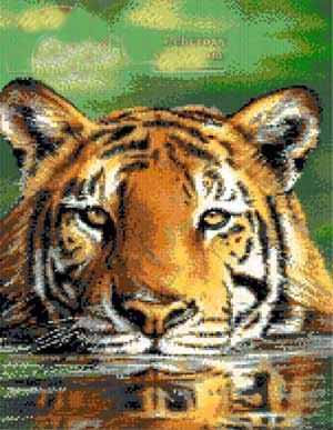 Water Tiger Counted Cross Stitch Patterns And Charts