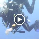 Bonaire 2011 - QH3bKMs5BhR3nQZnY-sdin2iO8riWY9zu8575OWce5s8j2VlhifMOH0ipBSwTwEZcMLPWkvVSg=m18