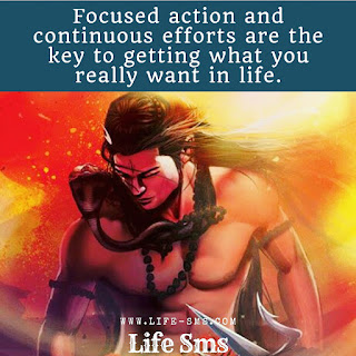 Focused action is key to success